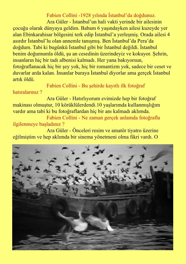 aragüler1-page1